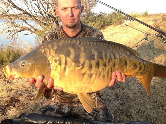 Big carp, Small baby | Getfish.co.za